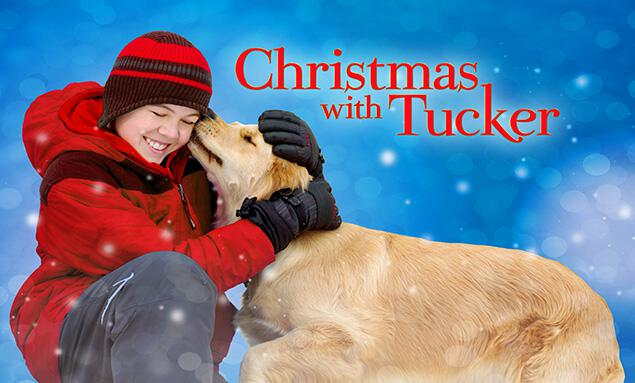 Christmas With Tucker.Watch Christmas With Tucker Online Free Christmas With